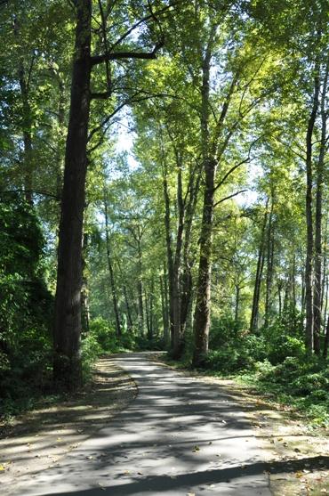 Puyallup's Riverwalk Trail - Biking Map