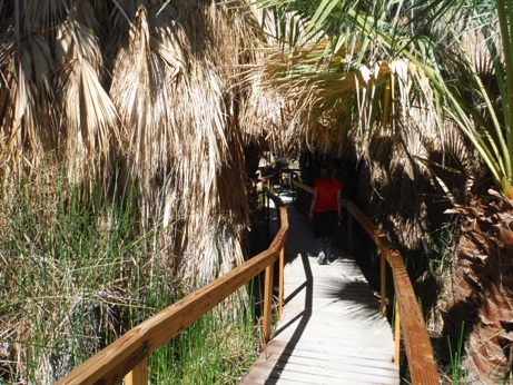Thousand Palms Thousand Palms Visitors Center