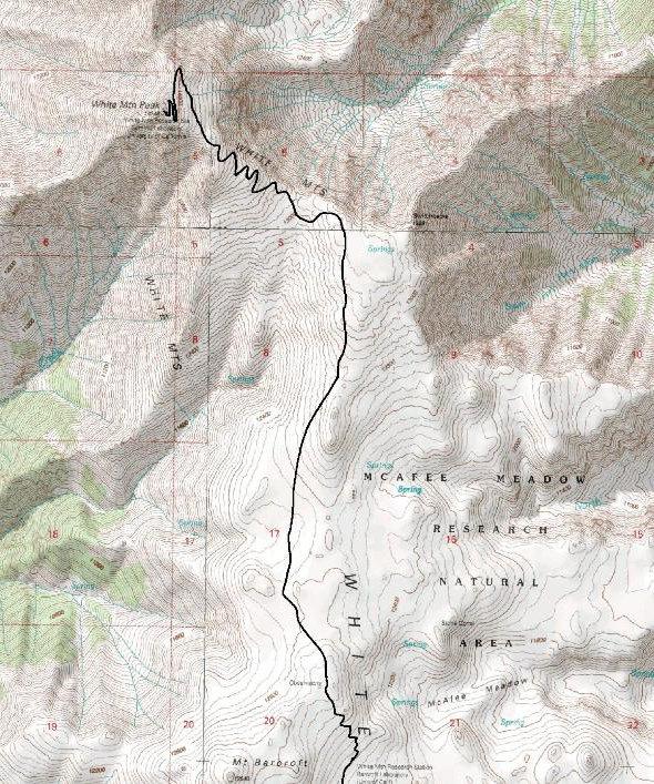 White Mountain Peak - California - Bristlecone Pines