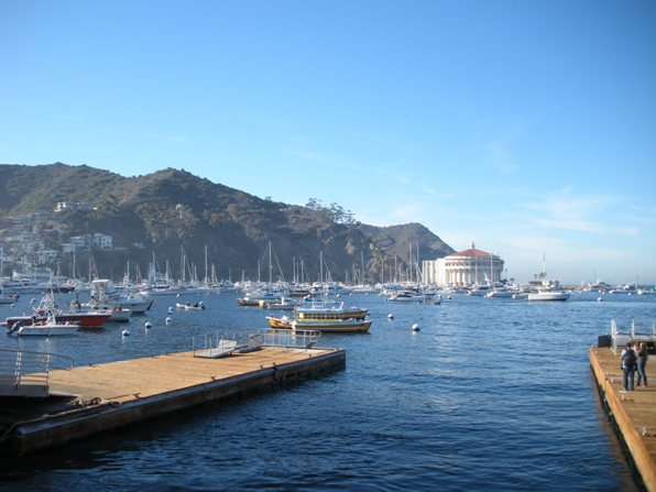 Catalina island california for Catalina bay