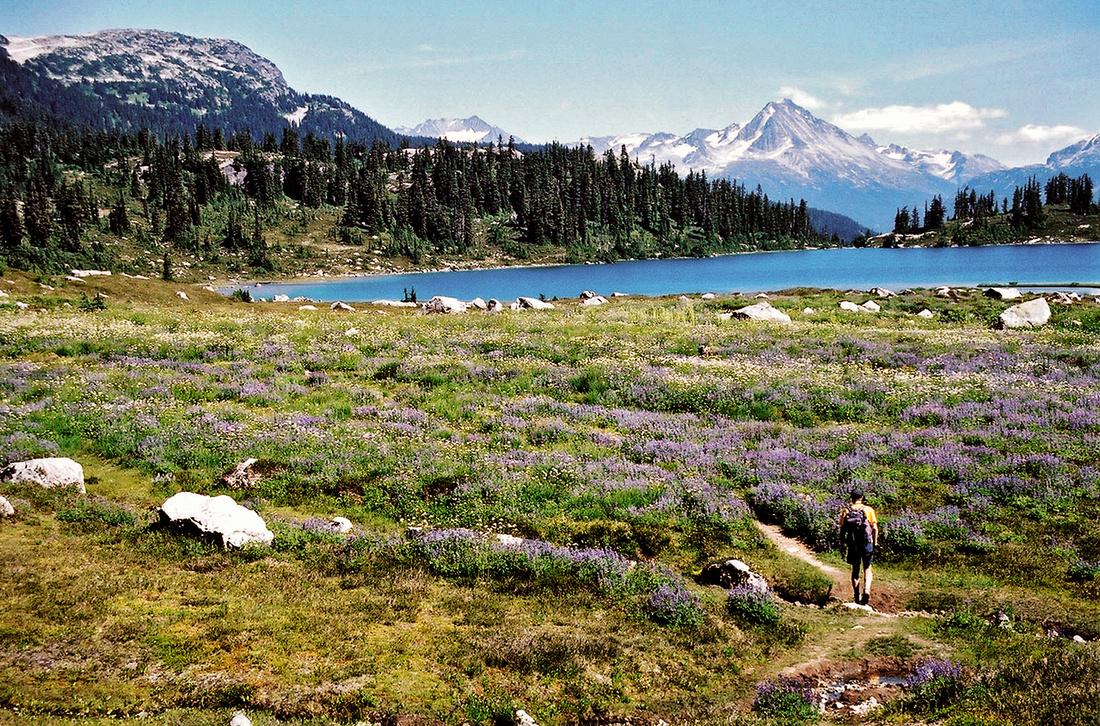 Off Road Pic >> Rainbow Lake - Whistler