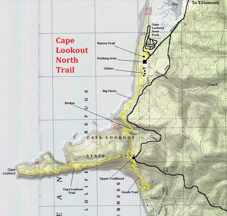 Cape Lookout North Trail  Oregon State Parks