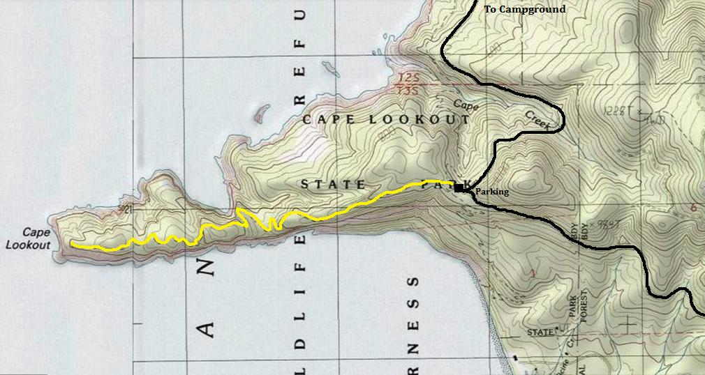 Cape Lookout Trail  Cape Lookout State Park Oregon