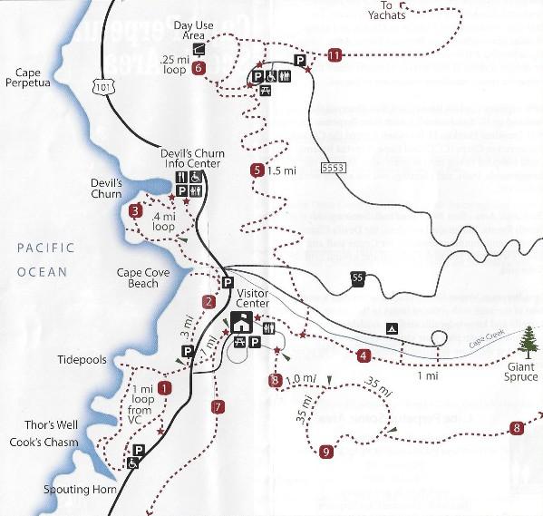 Cape Perpetua Scenic Area  Lookout Amp Trails