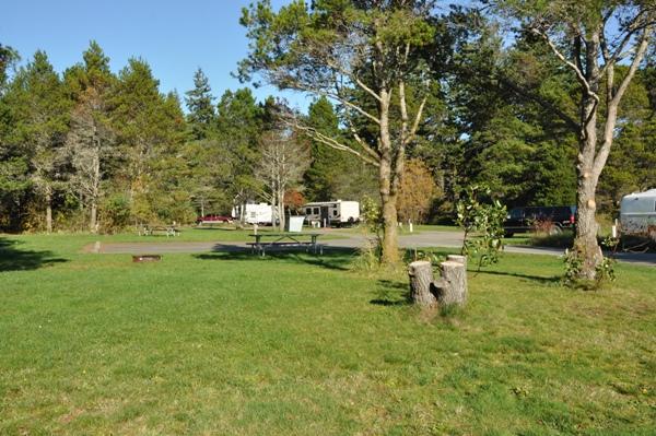 Belfair State Park Washington Parks Amp Recreation