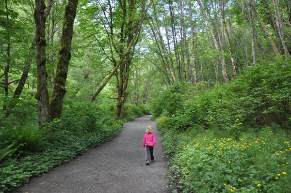 Meadowdale County Park Lunds Gulch