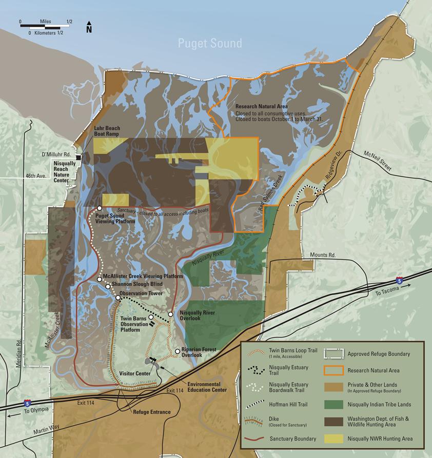 nisqually national wildlife refuge - hiking trails
