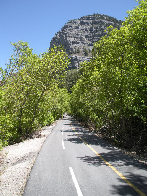 http://www.willhiteweb.com/utah/biking/provo_canyon_biking.jpg