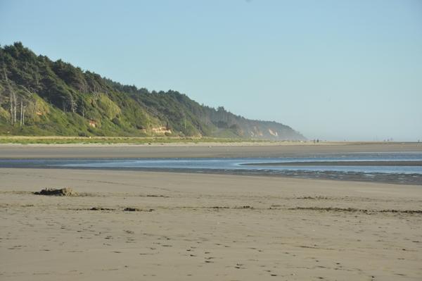 Washington State Ocean Beaches Map