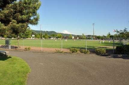 Daffodil Valley Sports...