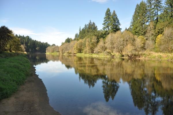 Paradise Point State Park Washington Parks Amp Recreation