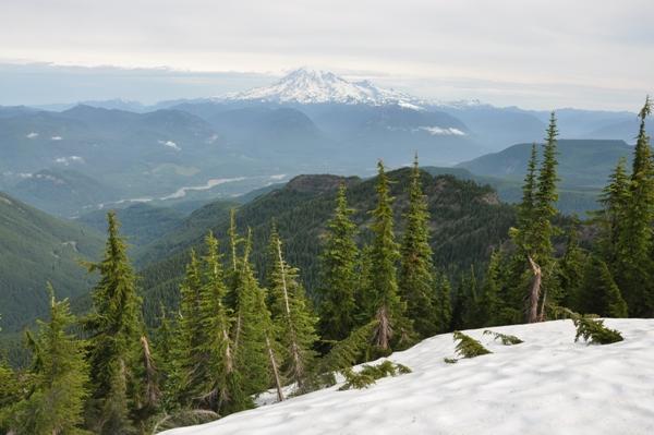 Mount Rainier View