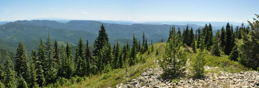 Drive By Wire >> Little Huckleberry Mountain Trail - Gifford Pinchot ...