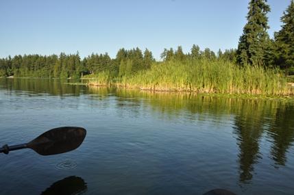 Northeast Road Trip >> Lake Geneva Kayak Trip - Federal Way