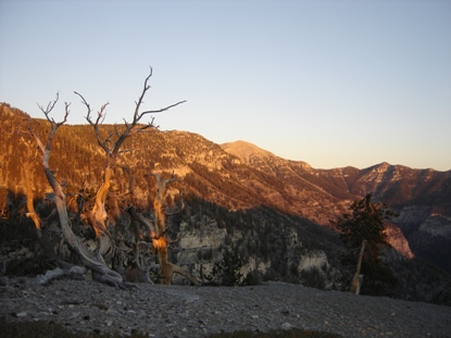 Mt. Charleston Nevada Hiking Information and Map
